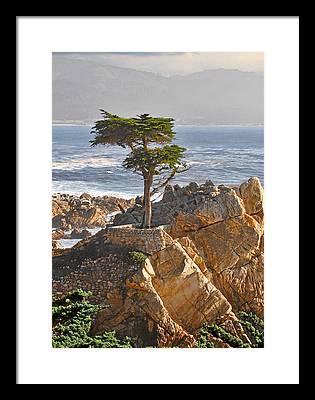 Rocky Coast Framed Prints
