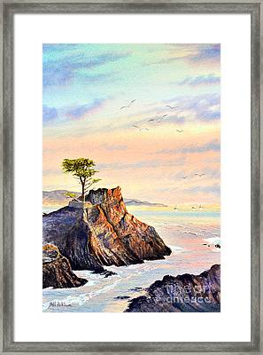 Lone Cypress Tree Pebble Beach Framed Print