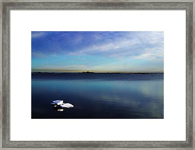 Lone Ice Framed Print