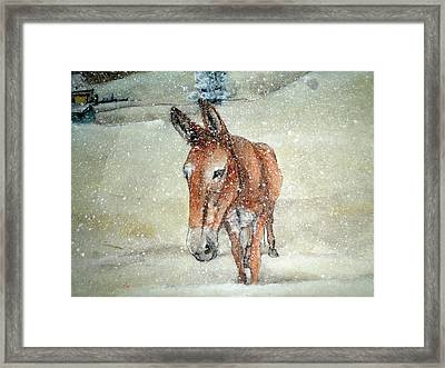 Framed Print featuring the painting Lone Mule by Debbi Saccomanno Chan
