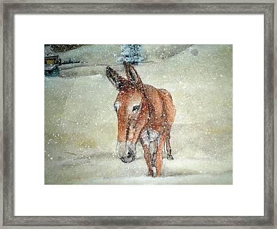 Lone Mule Framed Print by Debbi Saccomanno Chan