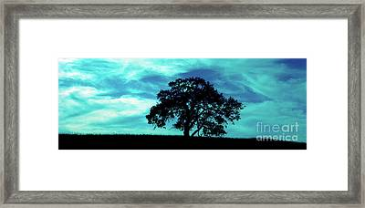 Framed Print featuring the photograph Lone Oak by Jim and Emily Bush