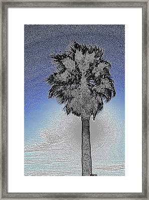 lone Palm 2 Framed Print