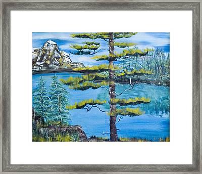 Lone Pine Framed Print by Mikki Alhart