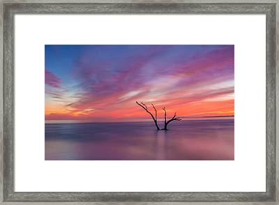 Lone Ranger Framed Print by RC Pics