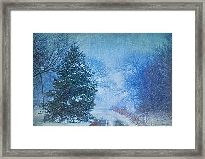 Lone Snowy Lane Framed Print