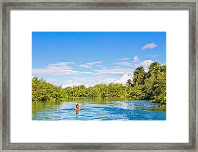 Framed Print featuring the photograph Lone Swimmer by Kim Wilson