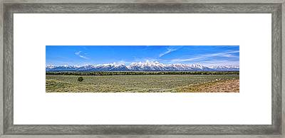 Lone Tree And The Tetons Framed Print