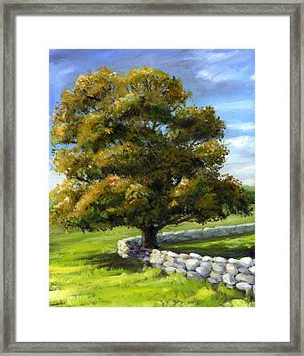 Lone Tree And Wall Framed Print