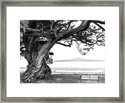 Lone Tree Bench And Volcano Framed Print by Yurix Sardinelly