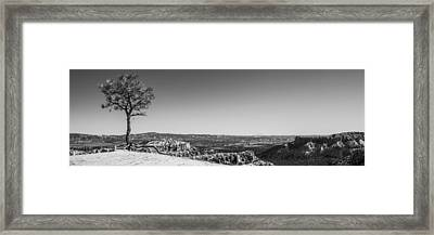 Lone Tree Framed Print by Chad Dutson