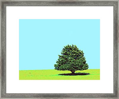 Lone Tree Framed Print by Dominic Piperata