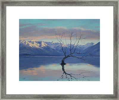 Lone Tree Framed Print by Graham Gercken