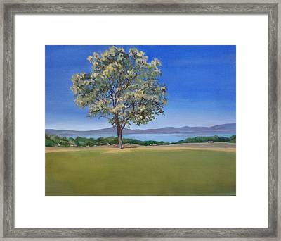 Lone Tree Hill Framed Print by Irene Corey