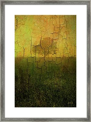 Lone Tree In Meadow -textured Framed Print by Dave Gordon