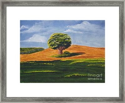 Lone Tree Framed Print by Mendy Pedersen