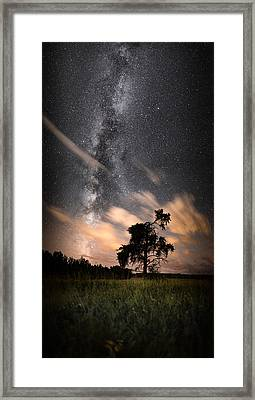 Lone Tree, Milky Way, Late Summer Framed Print