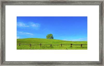 Lone Tree On A Hill Digital Art Framed Print