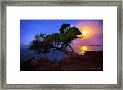 Lone Tree On Pacific Coast Highway At Moonset Framed Print