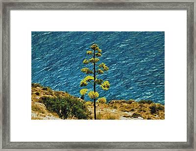 Lone Tree On Seashore Framed Print