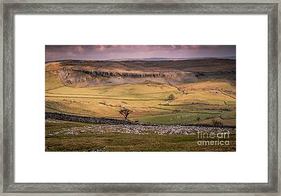Lone Tree Framed Print by Peter Stuart