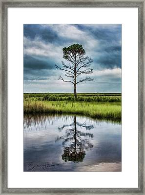 Lone Tree Reflected Framed Print