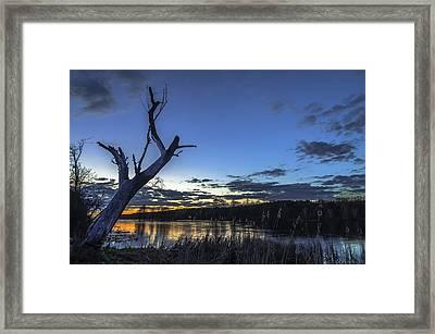Lone Witness Framed Print