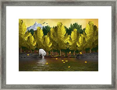 Lone Wolf At The River Framed Print
