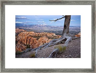 Loneliness Framed Print by Mike Irwin
