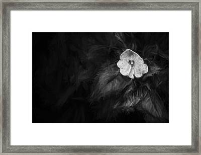 lonely 1 III Framed Print