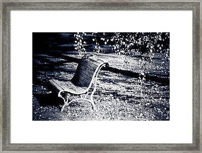 Lonely Bench Framed Print by Maggie Terlecki
