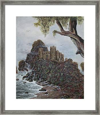 Lonely Castle Framed Print