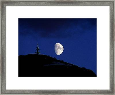 Framed Print featuring the photograph Lonely Companion by Blair Wainman