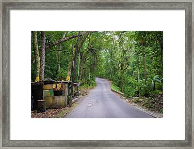 Lonely Country Road Framed Print