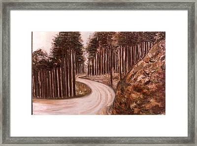 Lonely Curve Framed Print