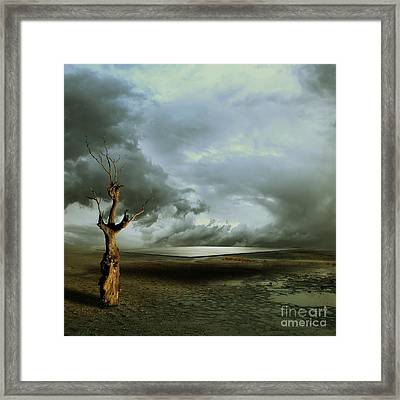 Lonely Death Framed Print