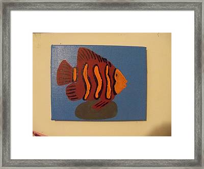 Lonely Fish Framed Print by Rhonda Jackson
