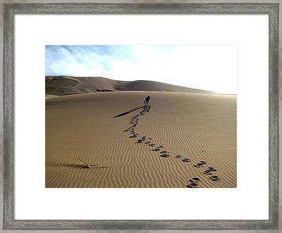Lonely Hiker In The Gobi Framed Print
