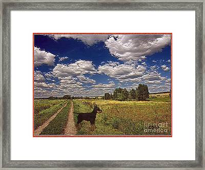 Lonely In The Field Framed Print by Pemaro
