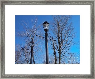 Lonely Lamp Post Framed Print by Deborah MacQuarrie-Selib