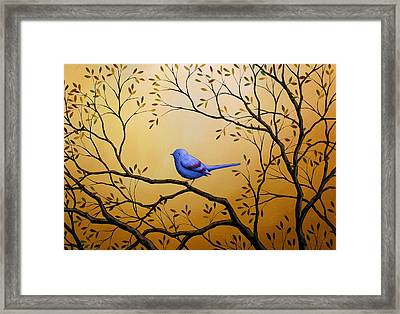 Lonely Night By Amy Giacomelli Bird Art Framed Print by Amy Giacomelli