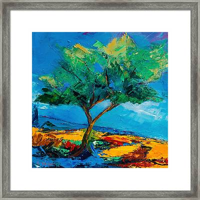 Lonely Olive Tree Framed Print