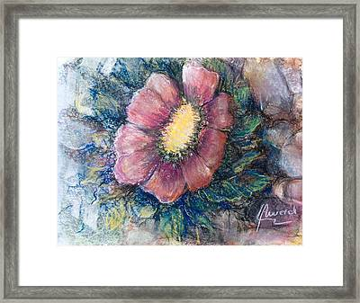 Lonely On The Rock  Framed Print