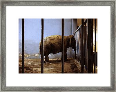 Lonely One Framed Print