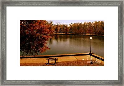 Lonely Park Bench - Sunset Framed Print
