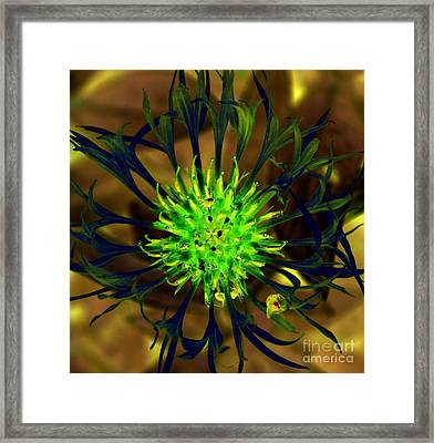 Framed Print featuring the photograph Lonely Sentinal by Erica Hanel