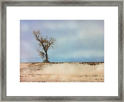 Lonely Sentinel  Framed Print