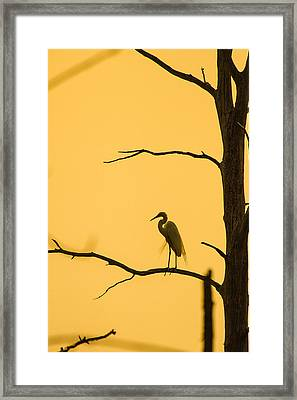 Lonely Silhouette Framed Print