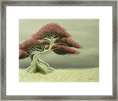 Lonely Soul Framed Print