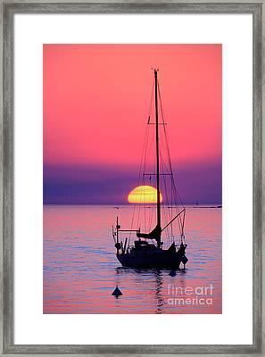 Framed Print featuring the photograph Lonely Sunset by Bernardo Galmarini